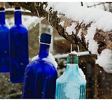 Cold Bottled Spirits by J. David Peterson