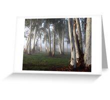 ~ Misty Morning Light ~ Greeting Card