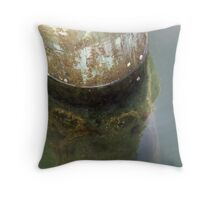 Barnacles and Reflections Throw Pillow