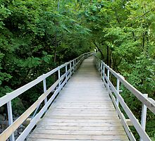 Niagra River Walkway by LauraLynnPhotos
