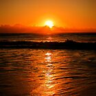 Surfers Sunrise by tracielouise