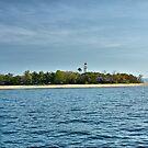 Low Island Port Douglas, Queensland by andreisky