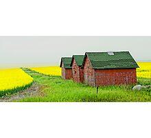 Prairie Colours Photographic Print