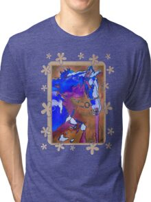 My Little Pony (Blue and Brown) Tri-blend T-Shirt