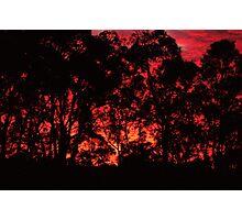 Rising Flame I Photographic Print