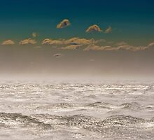 Wollongong Winds by 16images