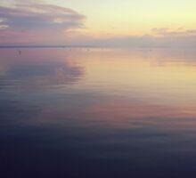 soft water by palinta