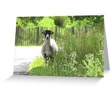 Rambling ram on a stroll Greeting Card