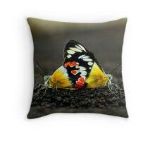 Butterflies mate on Sunrise Bridge Throw Pillow