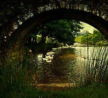 Geese at Two Bridges by moor2sea