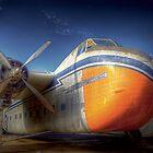 Bristol Freighter A81-1 by Robert  Welsh