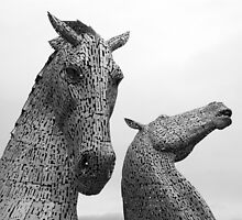 The Kelpies by Shaun Colin Bell