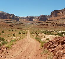 Country Desert Roads with Scenery by David  Hughes