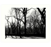 Forest in the City Art Print