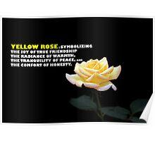 Yellow Rose.  Poster