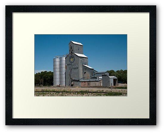 GTA Feeds Elevator, Choteau, Montana by Bryan D. Spellman