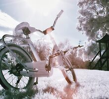 Glamour Bike in the Sun by MaxL