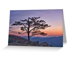 Twilight at Ravens Roost Greeting Card