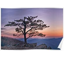 Twilight at Ravens Roost Poster