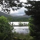 Aviemore and more by johnbanchory