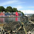 Tobermory Creels by johnbanchory