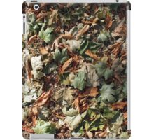 Top view of the green and brown fallen leaves of maple and chestnut iPad Case/Skin