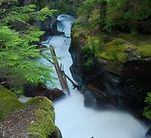 Avalanche Gorge by Gary Lengyel
