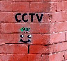 CCTV by Janie. D