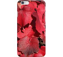 Red, The Colour of Autumn. iPhone Case/Skin