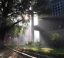 the Morning Rays by Abhishek Srivastava