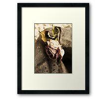 Unrequited Love 2 Framed Print