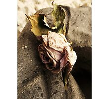 Unrequited Love 2 Photographic Print