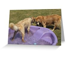 Grr! Back off Lance! This is MY TIME for the pool! Greeting Card