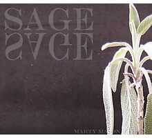 Sage  Photographic Print