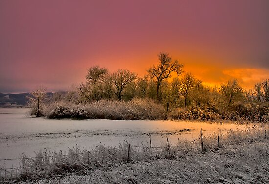 Oh That Glow by Charles & Patricia   Harkins ~ Picture Oregon