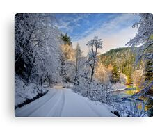 Santiam Wagon Road Delight Canvas Print