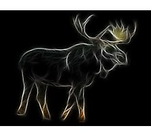 Medicine Wheel Totem Animals by Liane Pinel-Moose Photographic Print