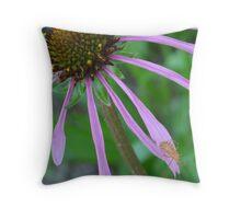 Orange bug on Purple Coneflower Throw Pillow