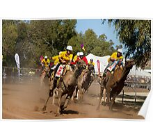 Alice Springs Camel Cup 2011 Poster
