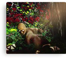 Assassin! Canvas Print