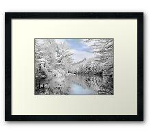 Winter at the Reservoir Framed Print