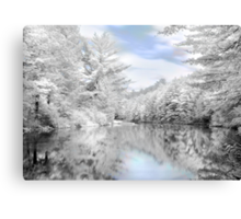 Winter at the Reservoir Canvas Print