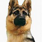 German Shepherd by Cazzie Cathcart