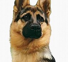 German Shepherd by Cazzie Cathcart