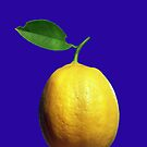 This is a lemon by Laurel Eby