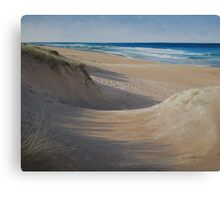 Escape from Winter Canvas Print