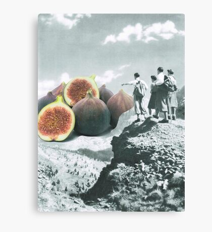Fig dreams  Canvas Print
