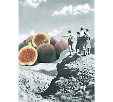 Fig dreams  Photographic Print