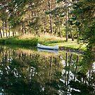 Canoe in Pond by eegibson