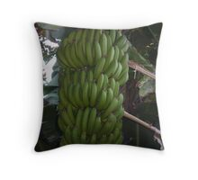 Magnificent Bananas grown in our garden Throw Pillow